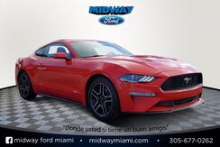 2019_Ford_Mustang_EcoBoost Premium_ Miami FL