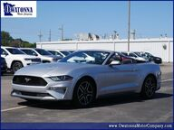 2019 Ford Mustang EcoBoost Premium Owatonna MN