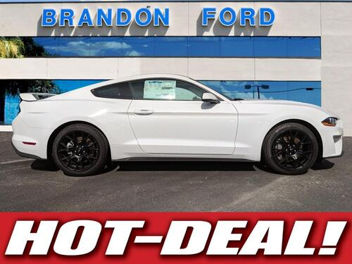2019 Ford Mustang EcoBoost Premium PERFORMANCE PACKAGE Tampa FL