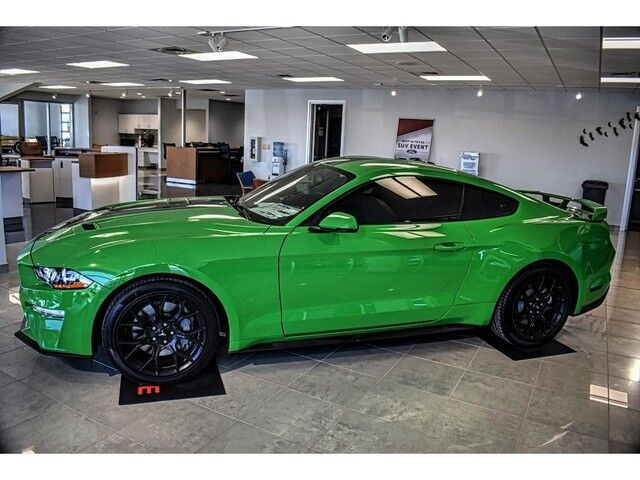 2019 Ford Mustang EcoBoost Premium Pampa TX