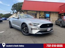 2019_Ford_Mustang_EcoBoost Premium_ South Amboy NJ