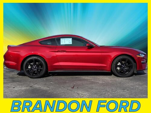 2019 Ford Mustang EcoBoost Premium Tampa FL