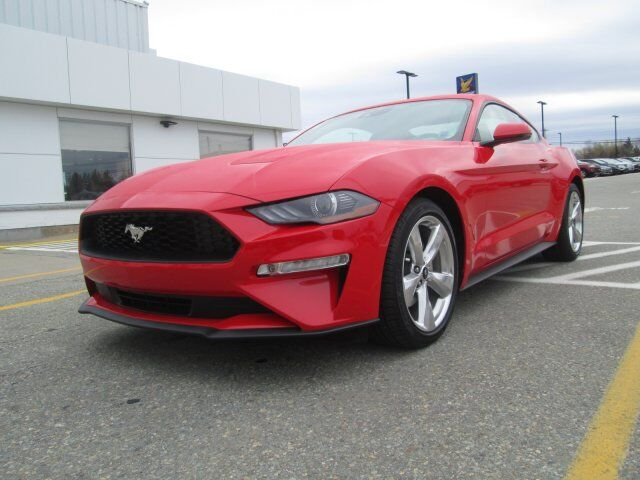 2019 Ford Mustang EcoBoost Premium Tusket NS