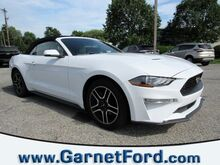 2019_Ford_Mustang_EcoBoost Premium_ West Chester PA