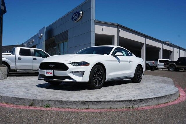 2019 Ford Mustang EcoBoost Rio Grande City TX