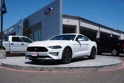 2019_Ford_Mustang_EcoBoost_ Rio Grande City TX