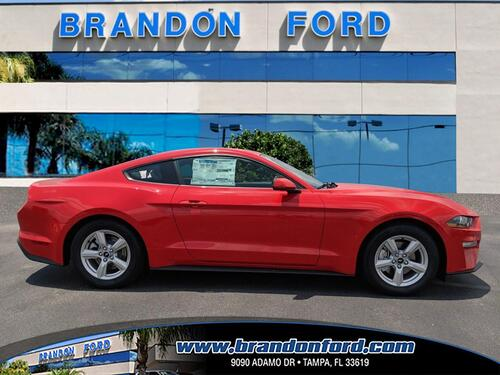 2019 Ford Mustang EcoBoost Tampa FL