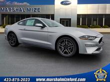 2019_Ford_Mustang_GT_ Chattanooga TN