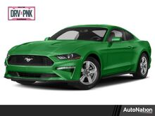2019_Ford_Mustang_GT_ Houston TX