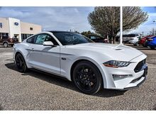 2019_Ford_Mustang_GT_ Pampa TX