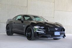 2019_Ford_Mustang_GT Premium_ Mineola TX