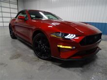 2019_Ford_Mustang_GT Premium_ Newhall IA