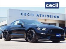 2019_Ford_Mustang_Shelby GT350_  TX