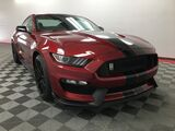 2019 Ford Mustang Shelby GT350 Fastback Appleton WI