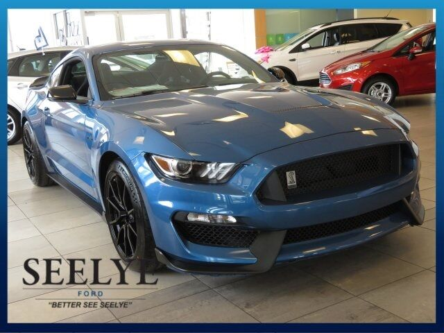2019 Ford Mustang Shelby GT350 Kalamazoo MI
