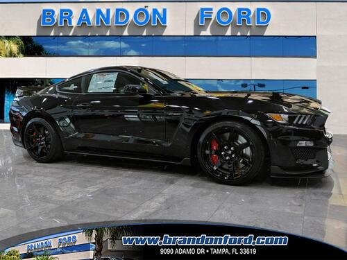 2019 Ford Mustang Shelby GT350R Tampa FL