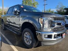 2019_Ford_Super Duty F-250 SRW_XLT_ Vista CA