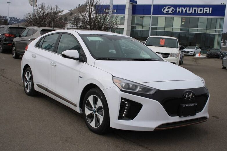 2019 Hyundai IONIQ Electric Ultimate Kelowna BC