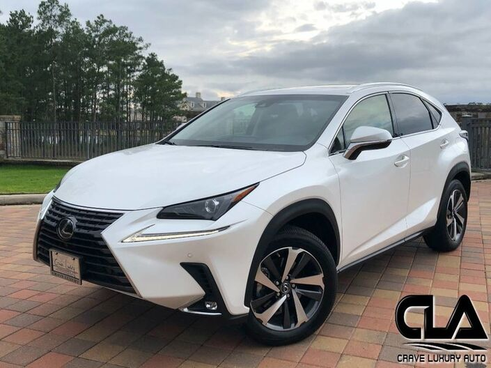 2019 Lexus NX NX 300 The Woodlands TX