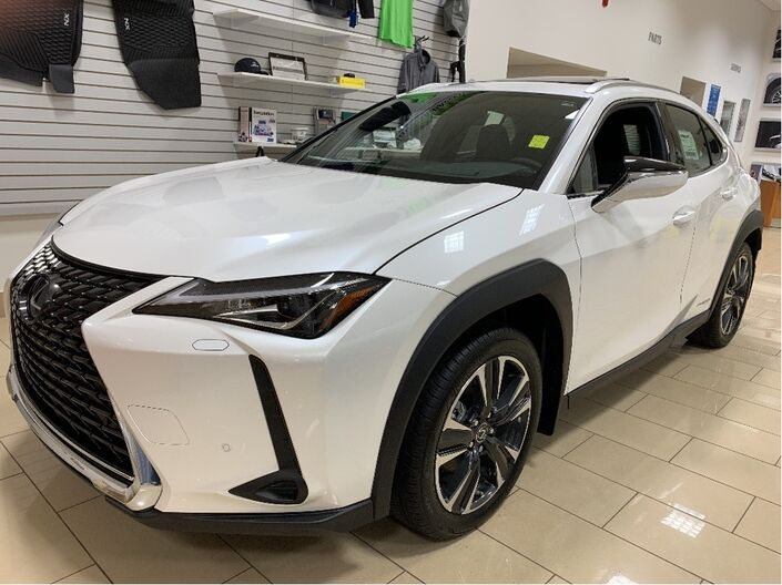 2019 Lexus UX 250h LUXURY Saint John NB
