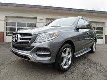 2019_Mercedes-Benz_GLE_400 4MATIC® SUV_ Greenland NH
