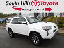 2019_Toyota_4Runner__ Washington PA