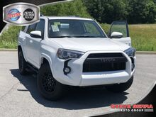 2019_Toyota_4Runner_4X2 PREMIUM V6_ Central and North AL