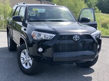 2019_Toyota_4Runner_4X2 SR5 V6_ Decatur AL