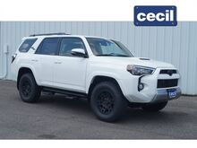 2019_Toyota_4Runner_TRD Off-Road Premium_  TX