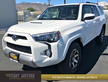 2019_Toyota_4Runner_TRD Off Road Premium_ Bishop CA