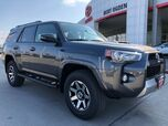 2019 Toyota 4Runner TRD Off-Road Premium