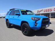 2019 Toyota 4Runner TRD Pro Grand Junction CO