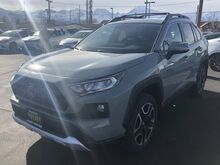 2019_Toyota_RAV4_Adventure AWD_ Bishop CA