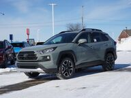 2019 Toyota RAV4 Adventure Grand Rapids MI