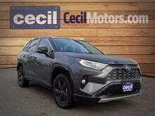 2019_Toyota_RAV4_Hybrid XSE_  TX