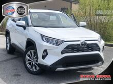 2019_Toyota_RAV4_LIMITED FWD SUV_ Central and North AL