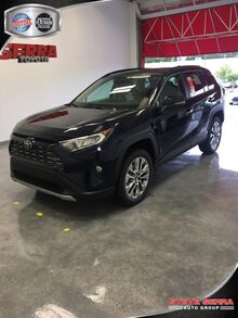 2019_Toyota_RAV4_Limited_ Central and North AL