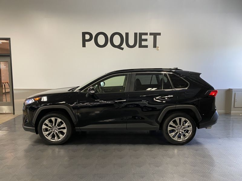 2019 Toyota RAV4 Limited Golden Valley MN