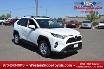 2019 Toyota RAV4 XLE Grand Junction CO