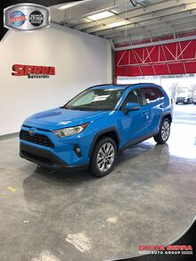2019_Toyota_RAV4_XLE Premium_ Central and North AL