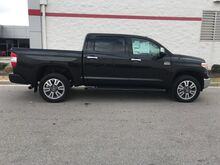 2019_Toyota_Tundra 4WD_1794 CREWMAX_ Decatur AL