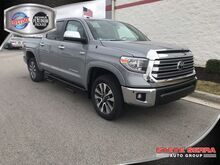 2019_Toyota_Tundra 4WD_LTD CREWMAX_ Decatur AL