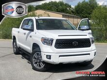 2019_Toyota_Tundra 4WD_PLAT CREWMAX_ Central and North AL