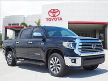 2019_Toyota_Tundra_Limited CrewMax_ Delray Beach FL