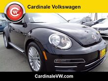 2019_Volkswagen_Beetle Convertible_2.0T Final Edition SE_ Salinas CA