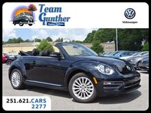 2019_Volkswagen_Beetle Convertible_Final Edition SE 6-Spd Auto_ Daphne AL