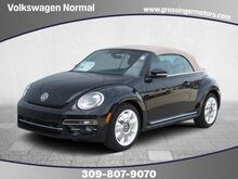 2019_Volkswagen_Beetle Convertible_Final Edition SEL_ Normal IL