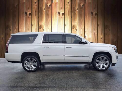 2020 Cadillac Escalade ESV Luxury Tampa FL