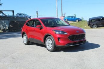 2020_Ford_Escape_SE_ Cape Girardeau MO