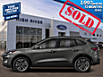 2020 Ford Escape SEL 4WD High River AB